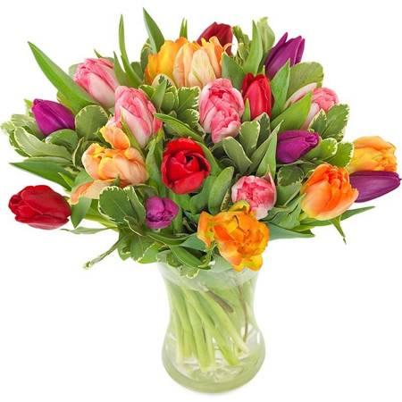 Bukiet 20 Tulipanów Kolorowych